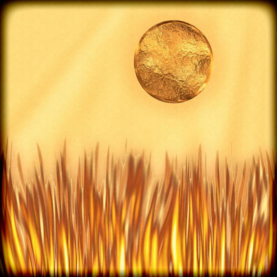 Digital Digital Art - Golden Summers by Wendy J St Christopher