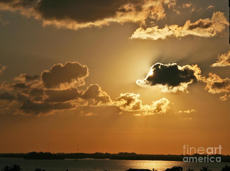 Golden Sunrise by Joan McArthur