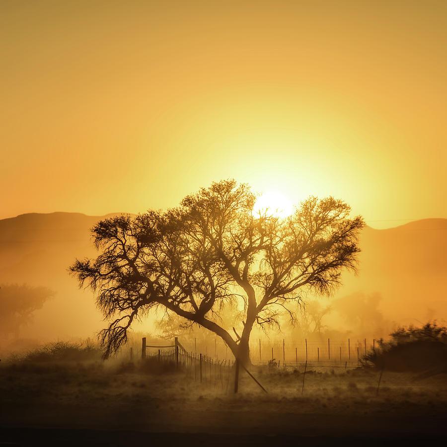 Landscape Photograph - Golden Sunrise by Piet Flour