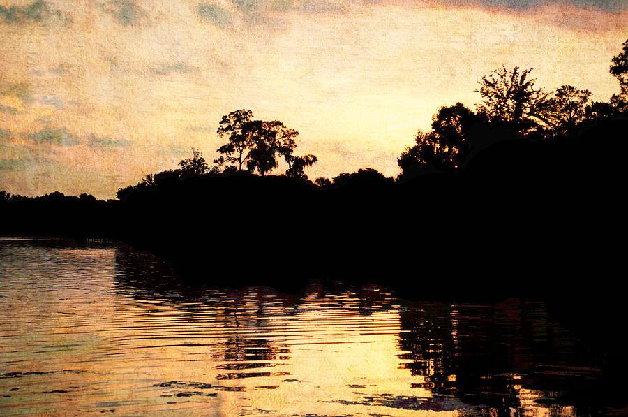 Florida Sunset Photograph - Golden Sunset by Randi Kuhne