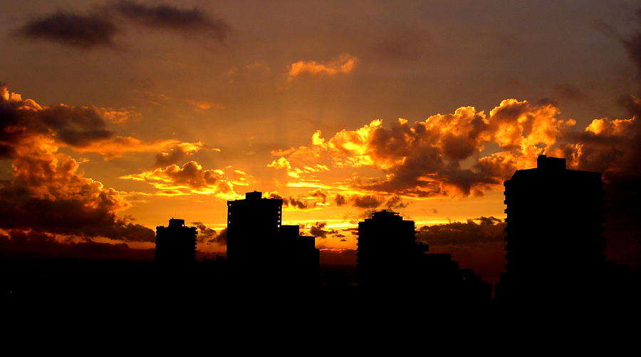 Decor Photograph - Golden Vancouver Sunset by Brian Chase