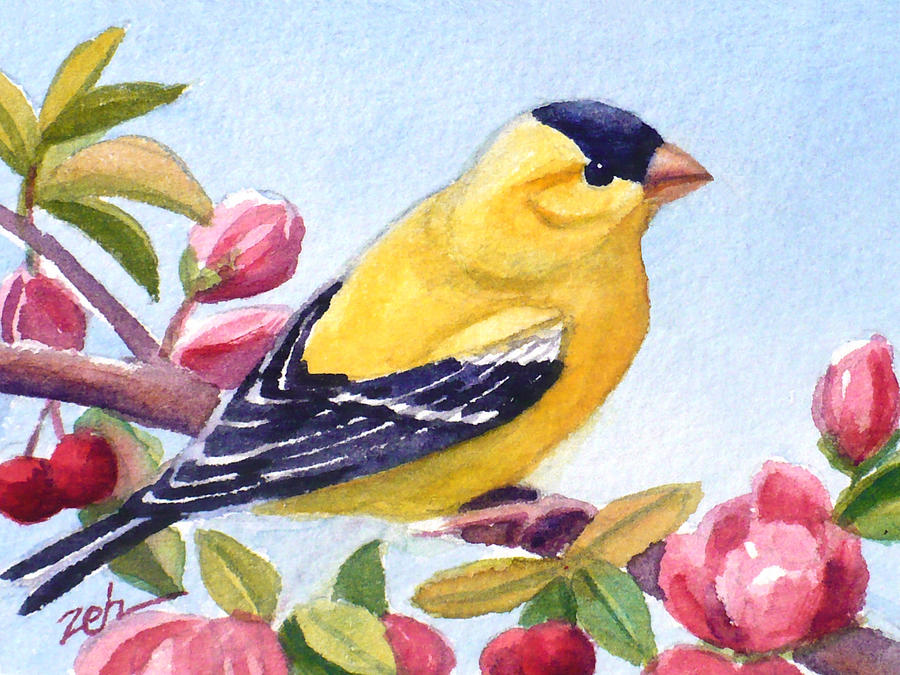 Goldfinch in a Crab Apple Tree by Janet Zeh