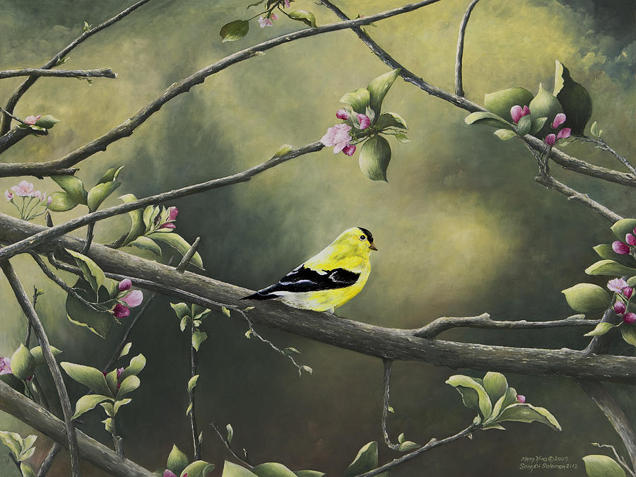 Goldfinch Paintings Painting - Goldfinch by Mary Ann King