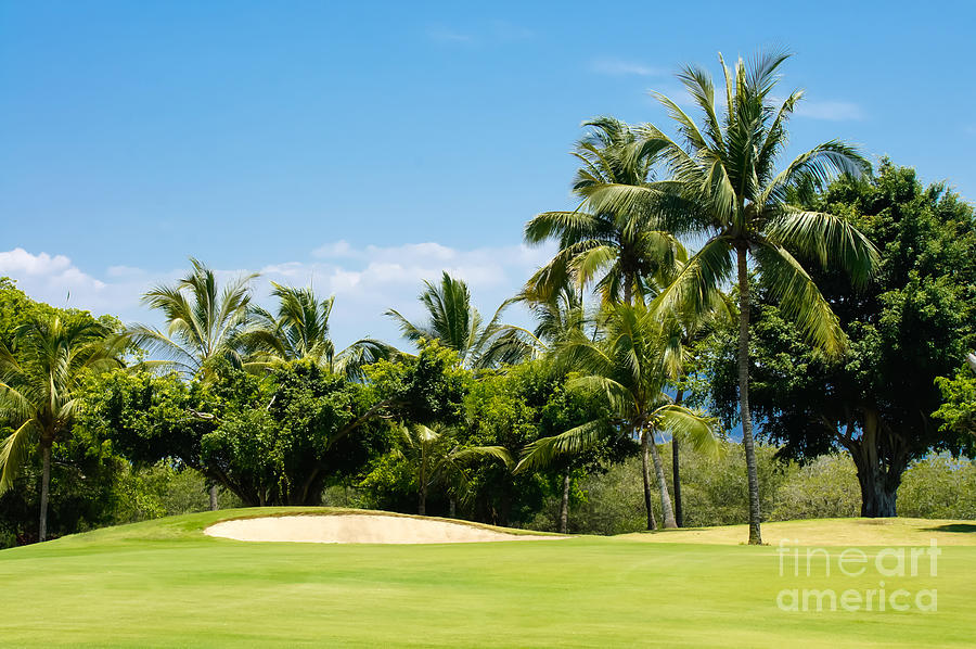 Golf Photograph - Golf Course by Aged Pixel