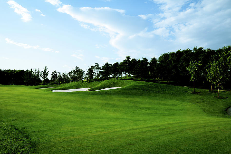Golf Course Background - Xlarge Photograph by Phototalk