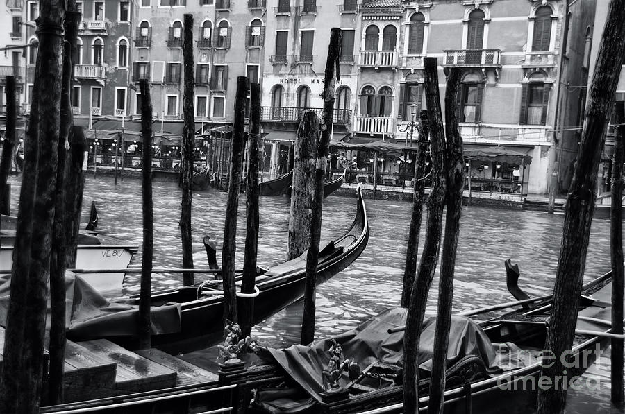 Olia Saunders Photograph - Gondolas In Venice 3 by Design Remix