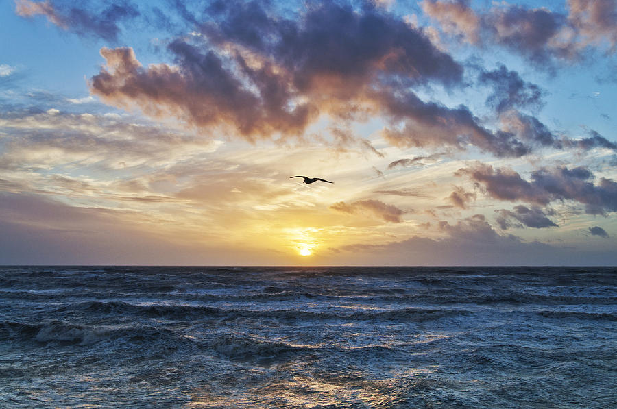 Sunset Photograph - Gone With The Sun by Nick Barkworth