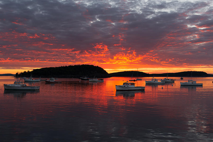 America Photograph - Good Morning Acadia by Bernard Chen