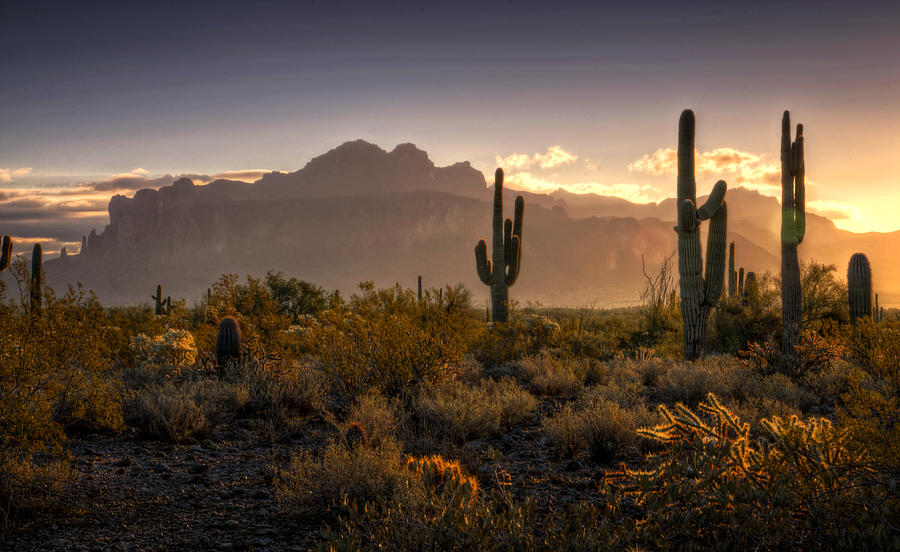 Good Morning Arizona Photograph by Saija Lehtonen