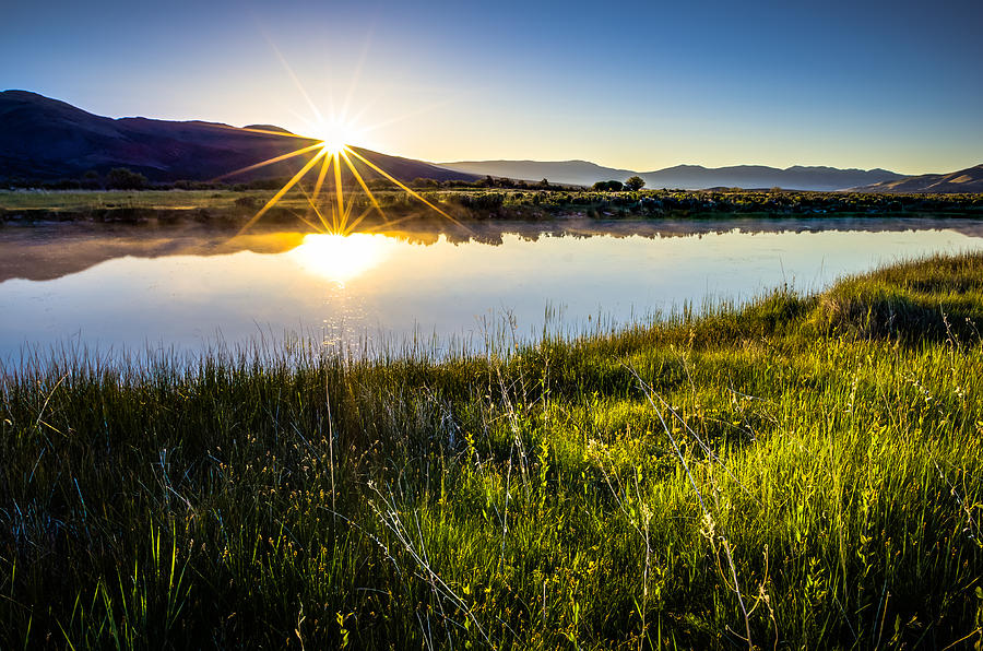California Photograph - Good Morning by Scott McGuire