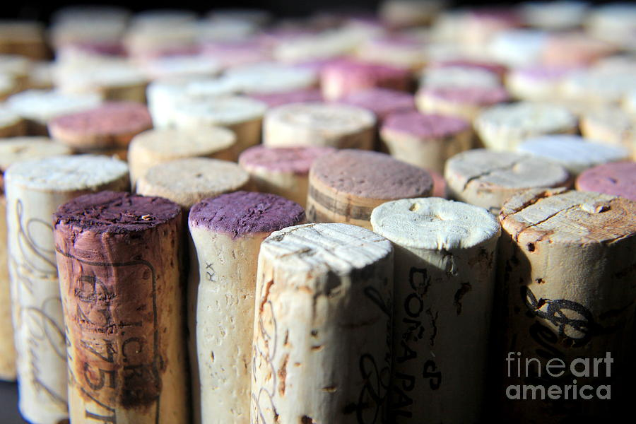 Wine Photograph - Good Weekend by Kenny Glotfelty