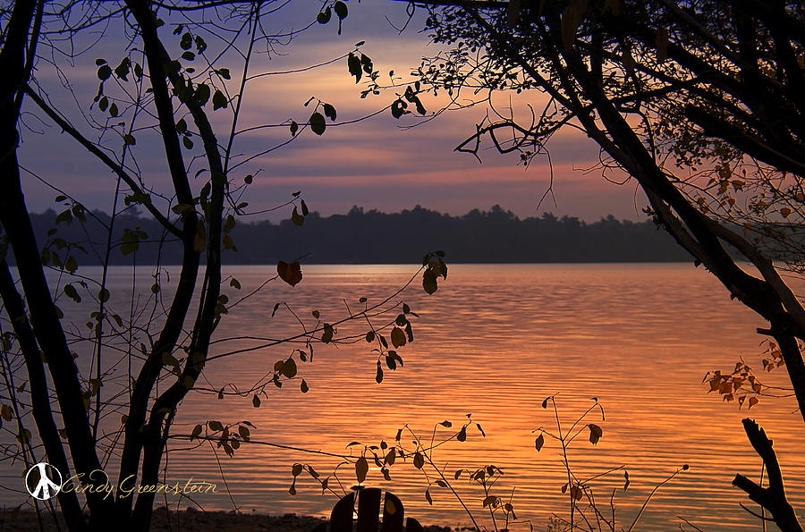 Goodnight Lake Photograph by Cindy Greenstein