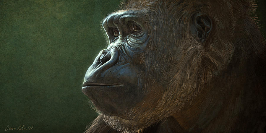 Gorilla Digital Art - Gorilla by Aaron Blaise