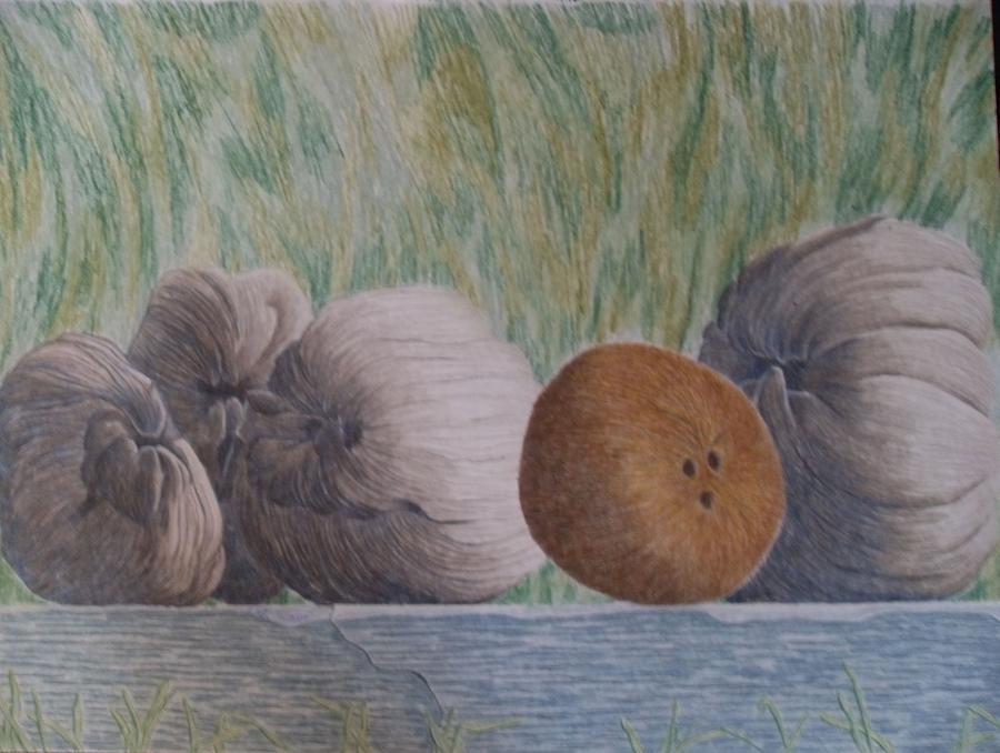 Still Life Painting - Gossip by A  Robert Malcom