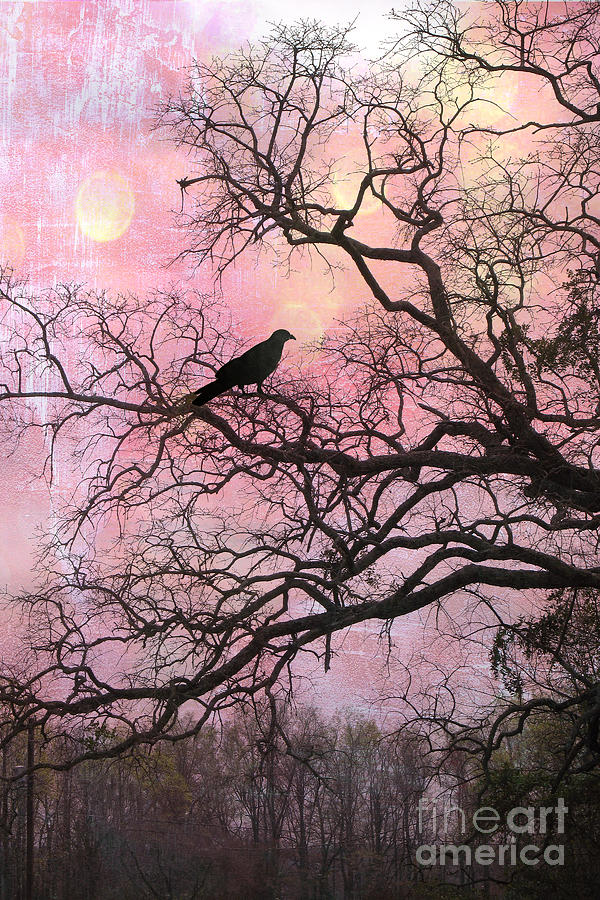 surreal nature photograph gothic fantasy surreal nature haunting pink trees limbs with haunting spooky - Pink Trees