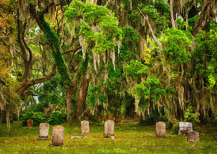 Georgia Photograph - Goulds Cemetery by Priscilla Burgers