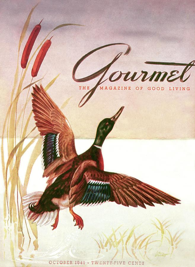 Gourmet Cover Of A Goose Photograph by Henry Stahlhut