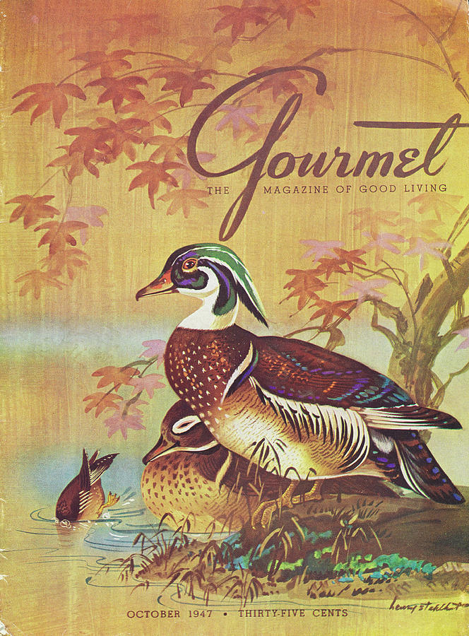 Gourmet Cover Of Wood Ducks Photograph by Henry Stahlhut