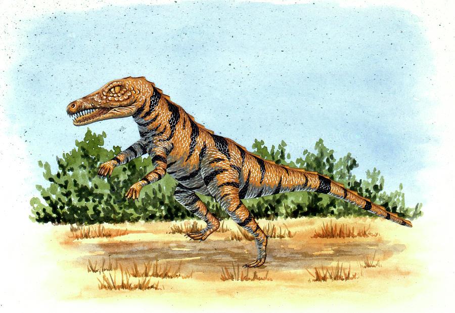 Nobody Photograph - Gracilisuchus Prehistoric Crocodile by Deagostini/uig
