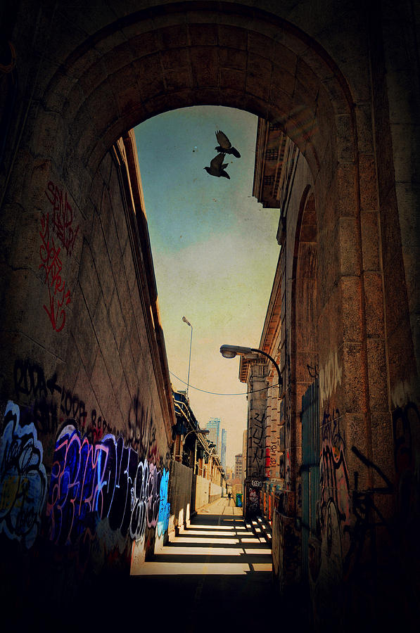New York City Photograph - Graffiti Row by Emily Stauring