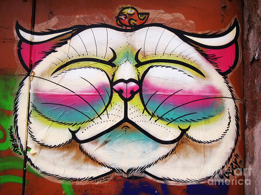 Graffiti Photograph - Graffiti Smiling Cat With Bird by Victoria Herrera
