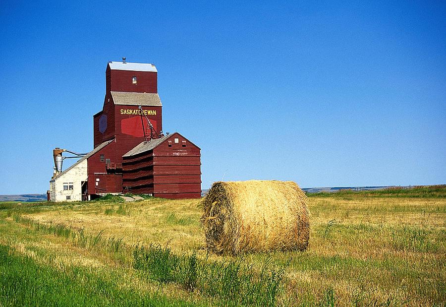 Canola Photograph - Grain Silo Saskatchewan by Buddy Mays