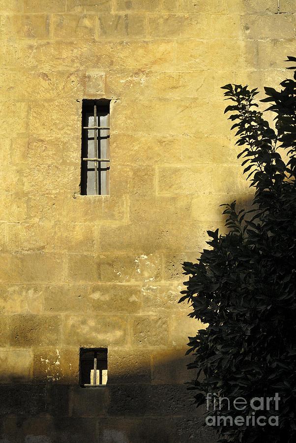 Arquitecture Photograph - Granada Cathedral by Guido Montanes Castillo