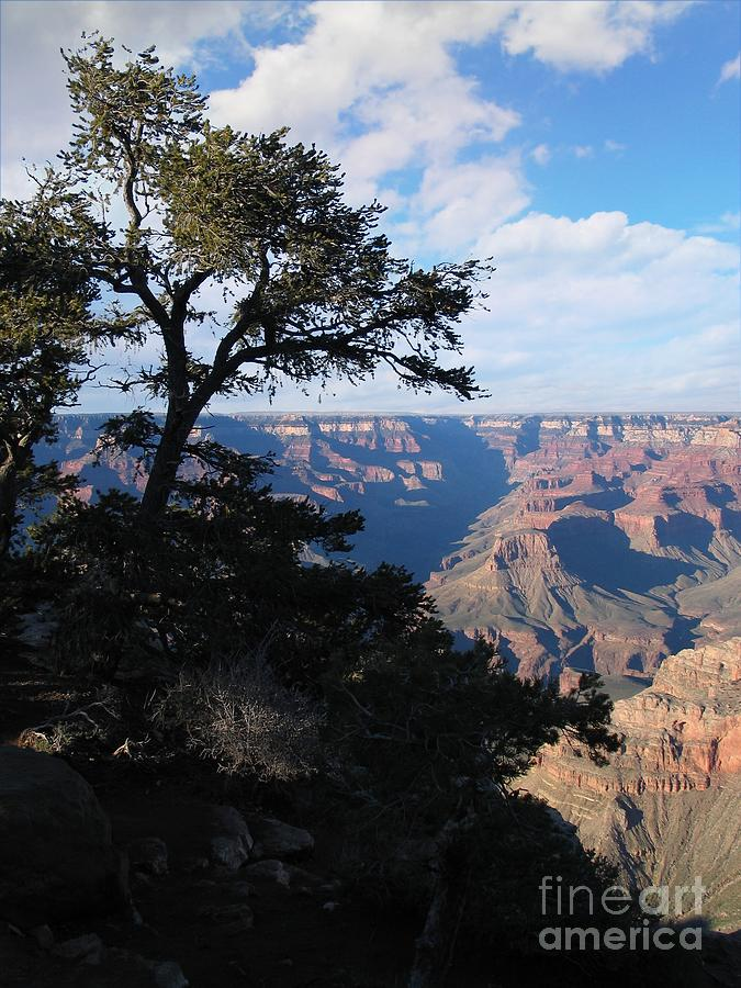 Grand Canyon Photograph - Grand Canyon Afternoon by Stu Shepherd