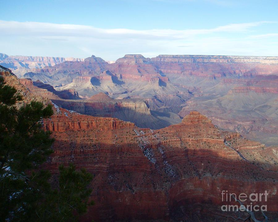 Grand Canyon Beauty Photograph by Janice Sakry