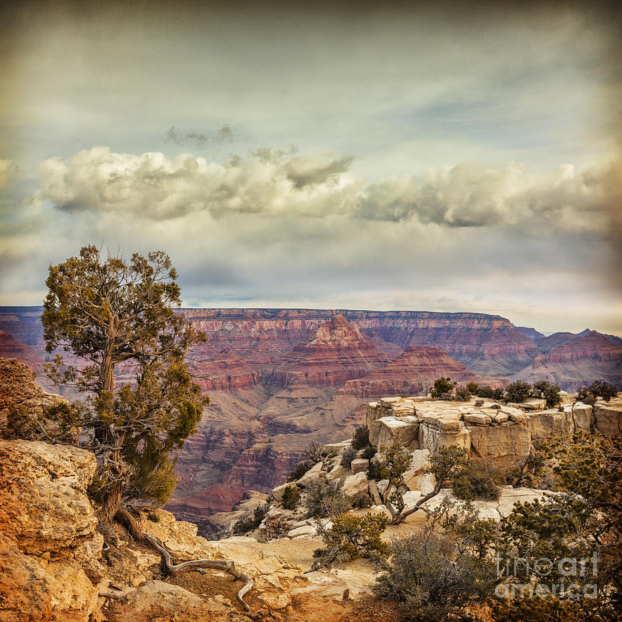 Arizona Photograph - Grand Canyon by Colin and Linda McKie