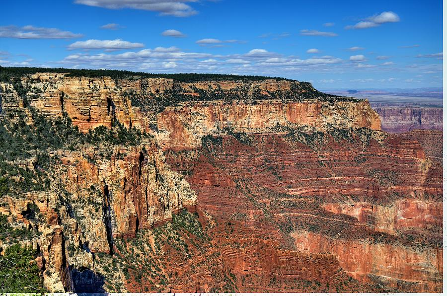 Grand Canyon North Rim Photograph by Thomas  Todd