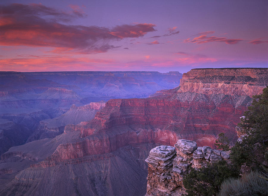 Grand Canyon South Rim From Pima Point Photograph by Tim Fitzharris