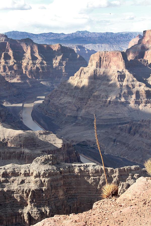 Grand Canyon Photograph - Grand Canyon by Yosi Cupano