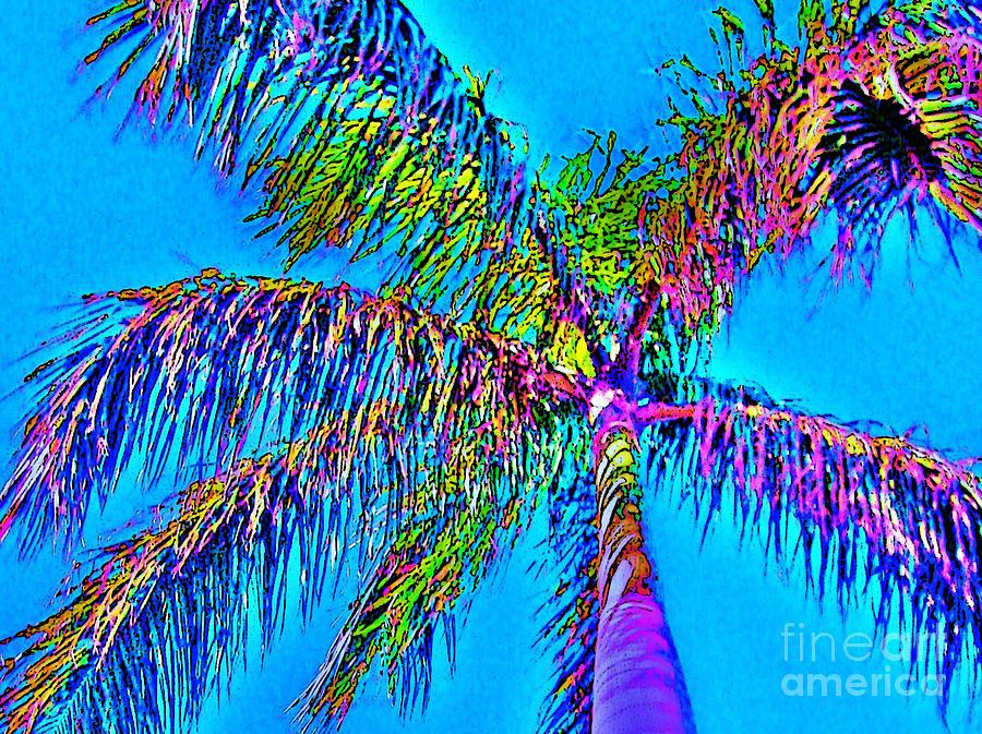 Grand Daddy Palm by Keri West