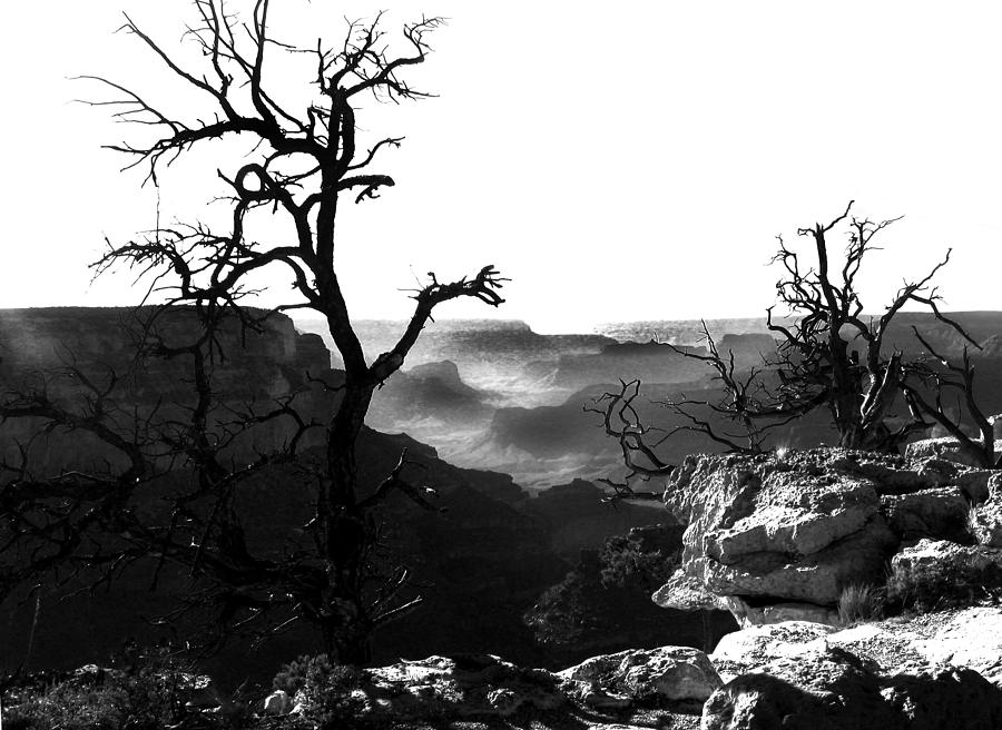 Grand Canyon Photograph - Grand Nature by Camille Lopez