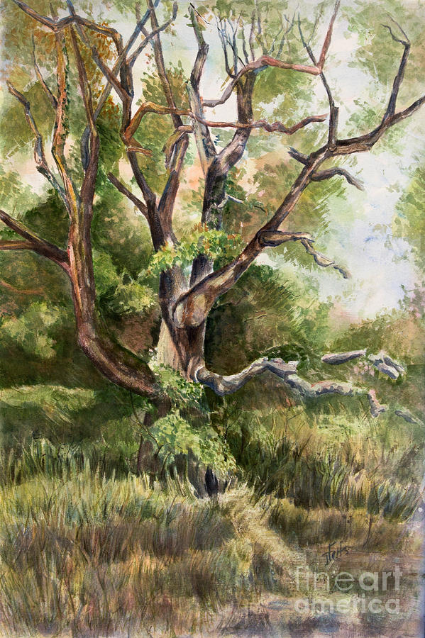 Tree Painting - Grand Old Tree by Janet Felts