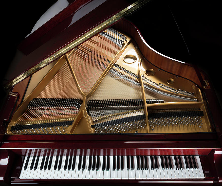 Grand Piano Overview, Keyboard Photograph by Dszc