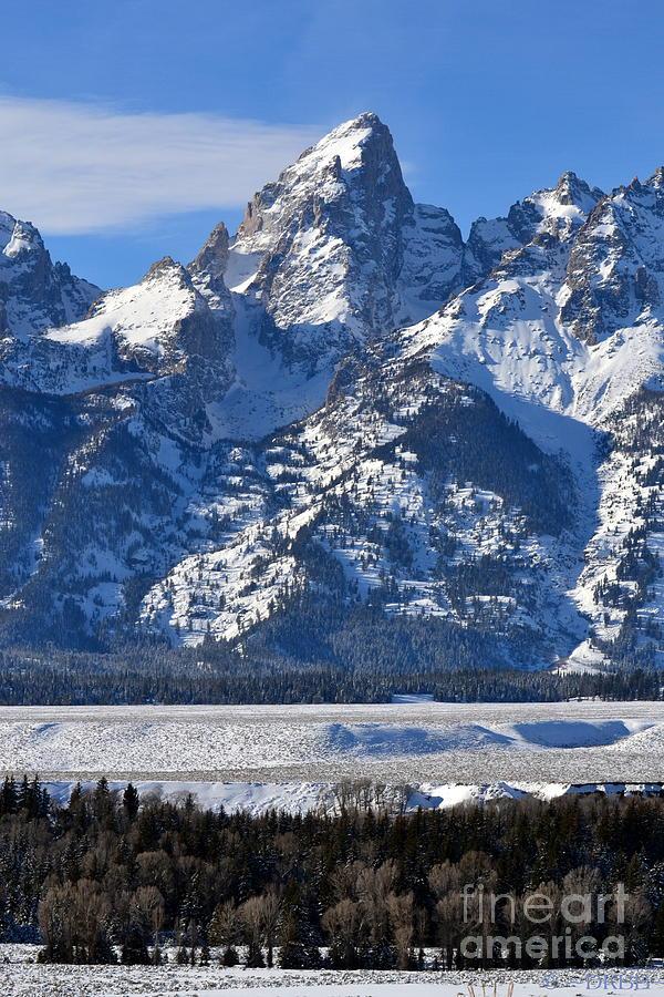 Grand Teton  by Dorrene BrownButterfield