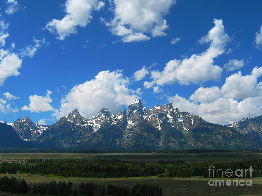 Mountains Photograph - Grand Teton National Park by Janice Westerberg