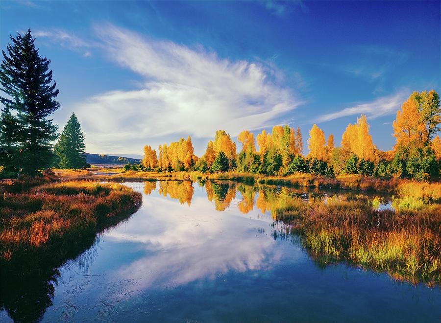 Grand Teton National Park, Wy Photograph by Ron thomas
