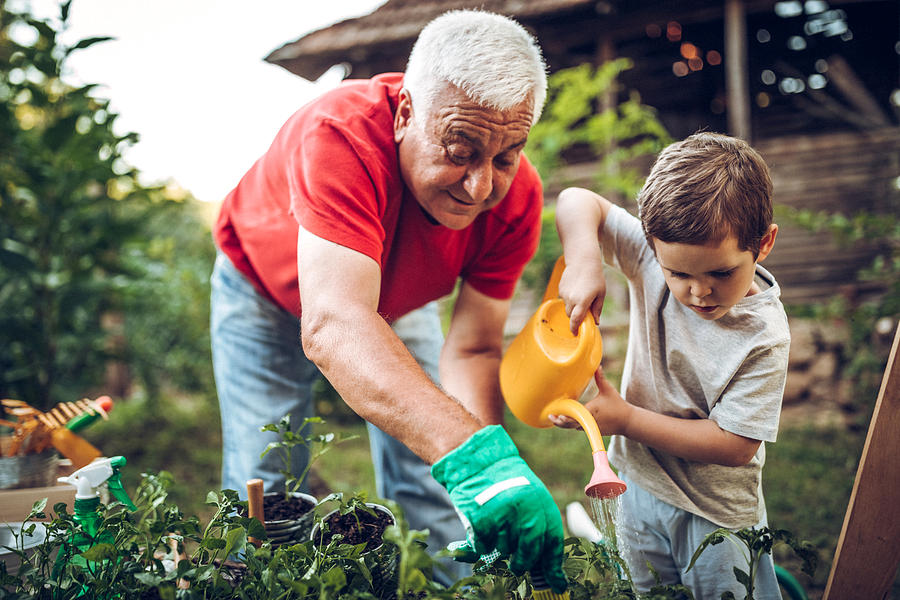 Grandfather and grandson in garden Photograph by Eclipse_images
