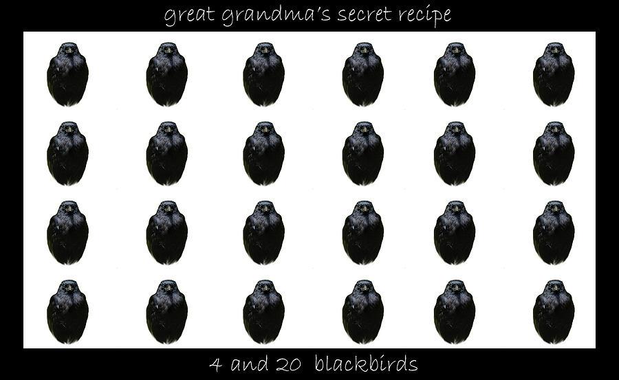 Blackbird Photograph - Grandmas Secret Recipe by Jennifer Muller