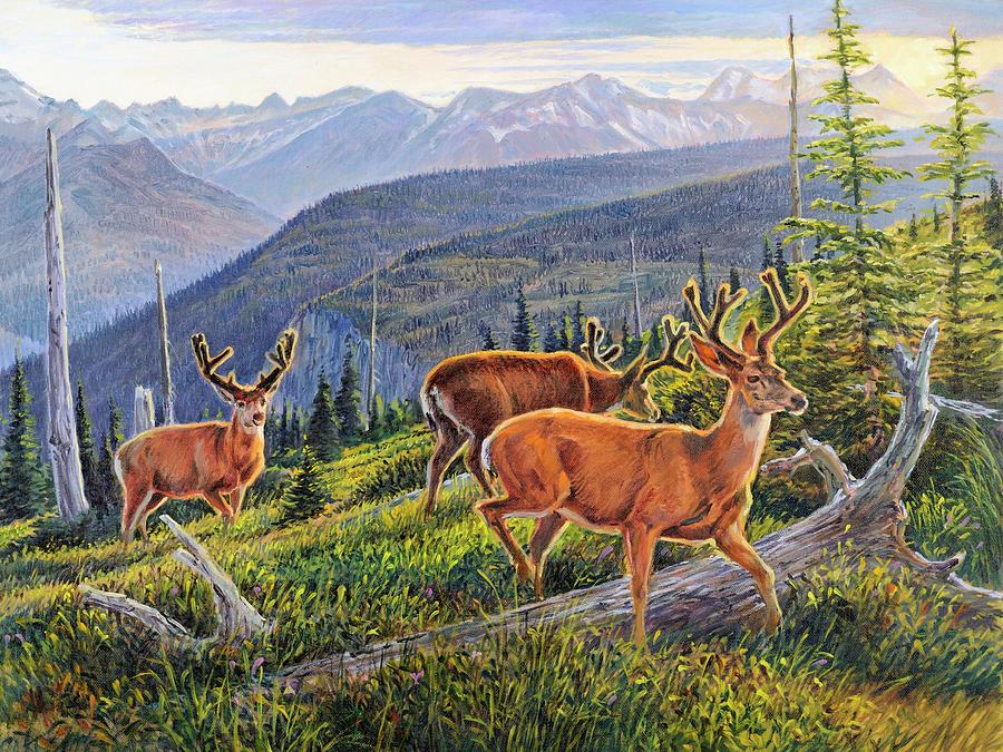 Wildlife Painting - Granite Park Bucks by Steve Spencer