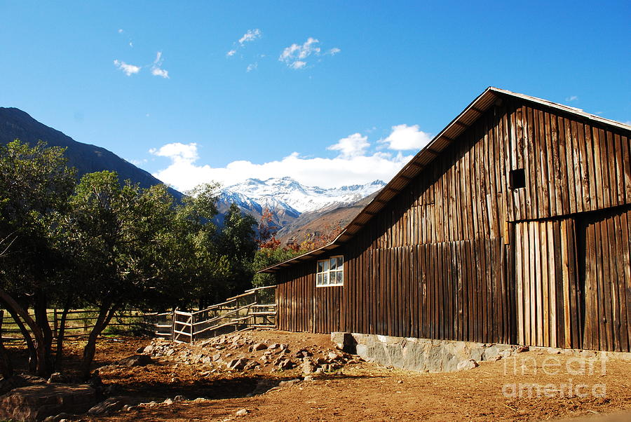 Farm Photograph - Granja Chilena by Susan Hernandez