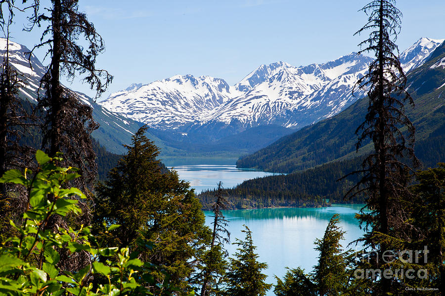 Alaska Photograph - Grant Lake Overlook by Chris Heitstuman