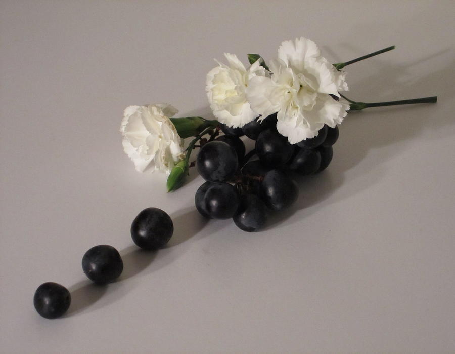 Black Grapes Photograph - Grape Flavored Carnations by Good Taste Art
