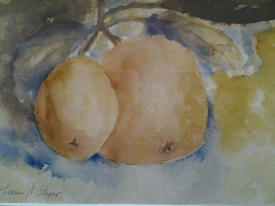 Grapefruit Painting - Grapefruit On A Tree by Tom Steiner