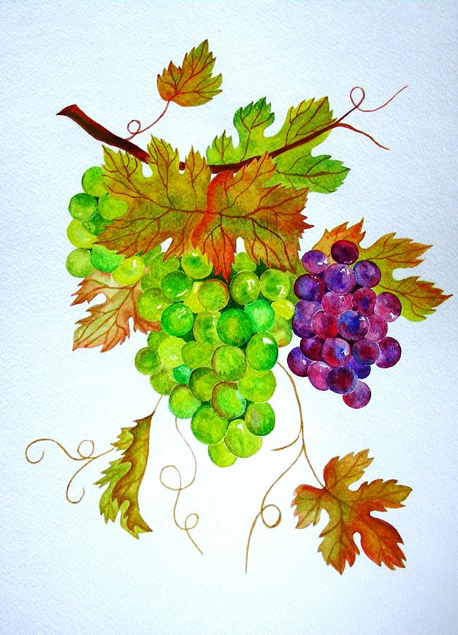 Grapes Painting - Grapes by Elena Mahoney
