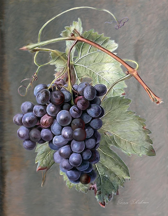 Grapes Painting by Enzie Shahmiri
