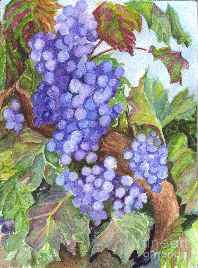 Grape Painting - Grapes For The Harvest by Carol Wisniewski